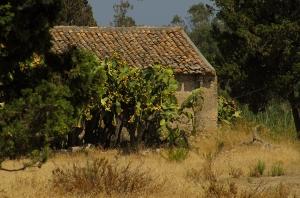 asmundo-sicilia-architettura-rurale-tindari