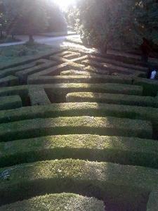 villa-pisani-stra-foto-labirinto-paesaggio-giardino
