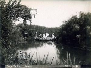fiume-anapo-river-papirus-siracusa-giovanni-crupi-photo